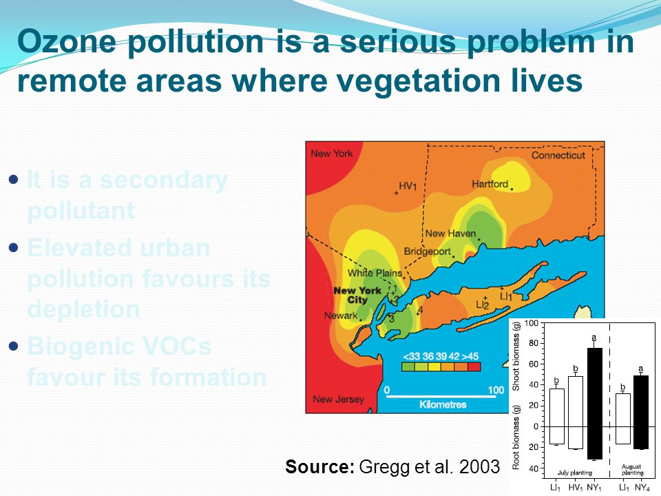 Ozone pollution is a serious problem in remote areas where vegetation lives It is a secondary pollutant Elevated urban pollution favours its depletion