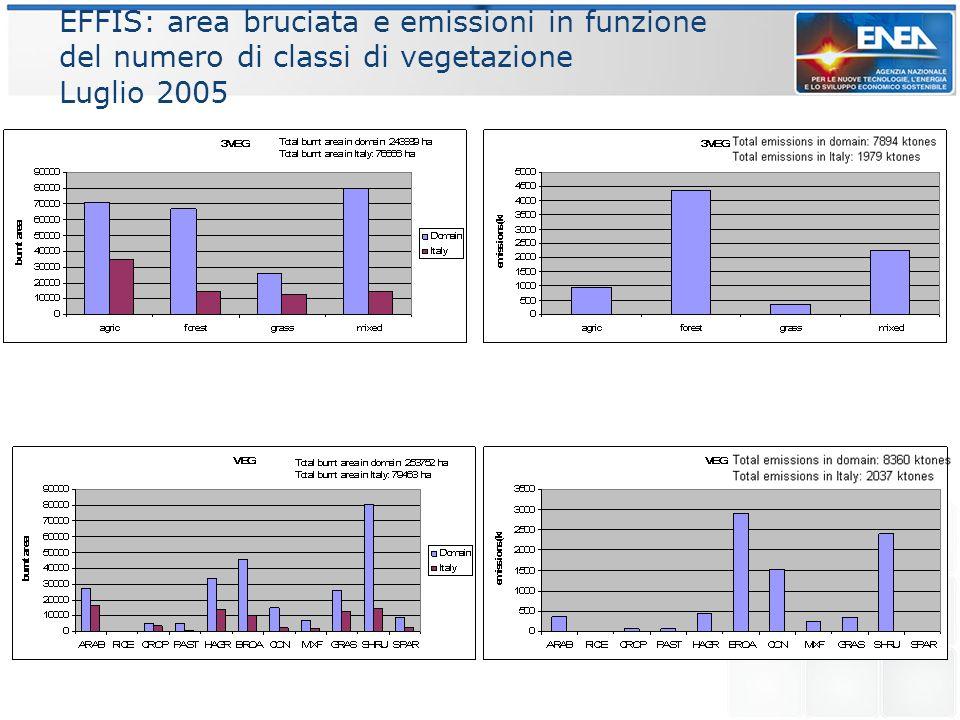 EFFIS: area bruciata e emissioni in funzione del numero di classi di vegetazione Luglio 2005