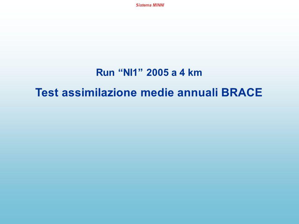 Sistema MINNI Run NI1 2005 a 4 km Test assimilazione medie annuali BRACE