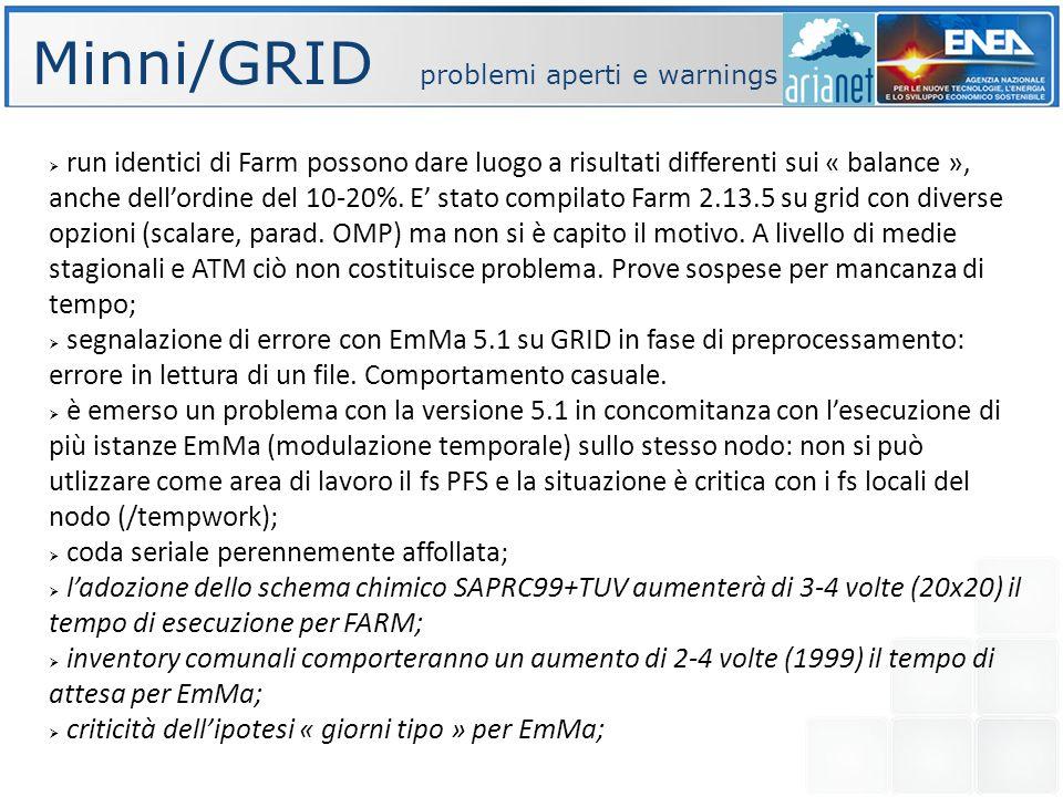 Minni/GRID problemi aperti e warnings run identici di Farm possono dare luogo a risultati differenti sui « balance », anche dellordine del 10-20%.