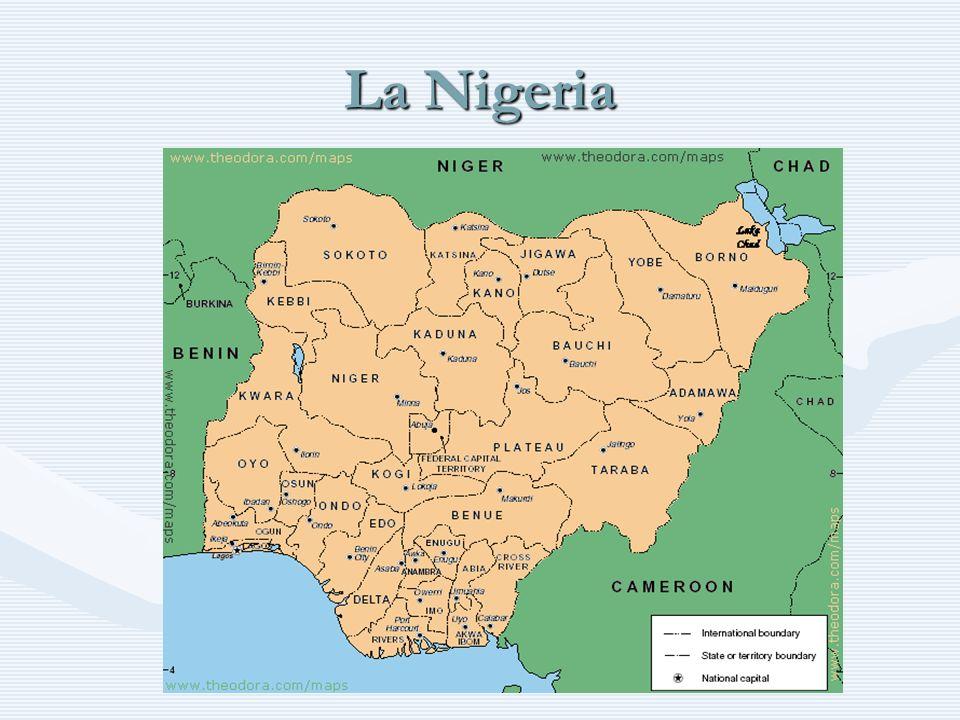 Alcune informazioni Forma di governo: Repubblica Federale (Federal Republic of Nigeria) dell Africa centro-occidentale.Forma di governo: Repubblica Federale (Federal Republic of Nigeria) dell Africa centro-occidentale.