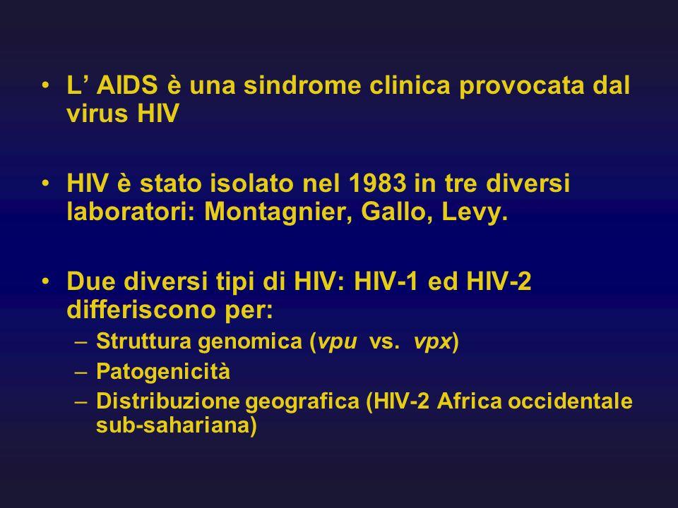 L AIDS è una sindrome clinica provocata dal virus HIV HIV è stato isolato nel 1983 in tre diversi laboratori: Montagnier, Gallo, Levy. Due diversi tip