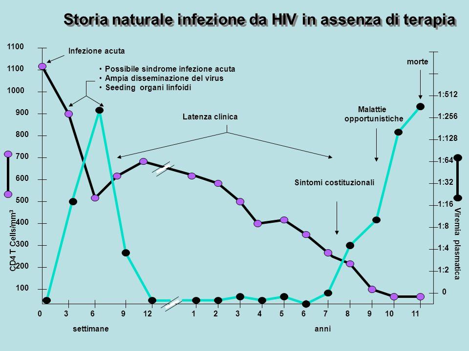 Storia naturale infezione da HIV in assenza di terapia settimane CD4 T Cells/mm 3 Viremia plasmatica 036211110912 100 200 300 400 500 600 700 800 900