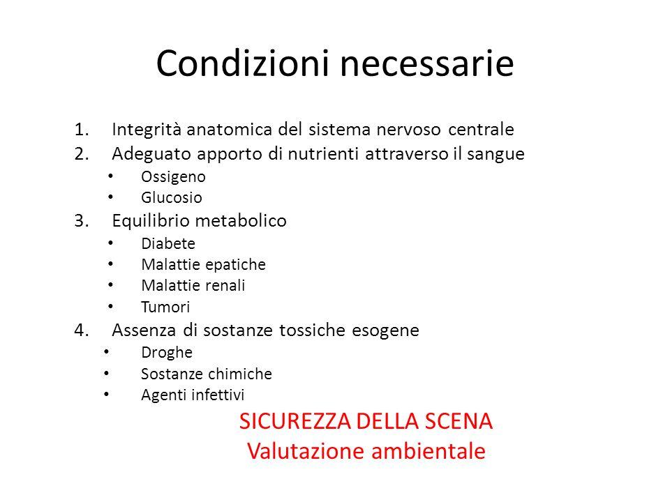 Condizioni necessarie 1.Integrità anatomica del sistema nervoso centrale 2.Adeguato apporto di nutrienti attraverso il sangue Ossigeno Glucosio 3.Equi