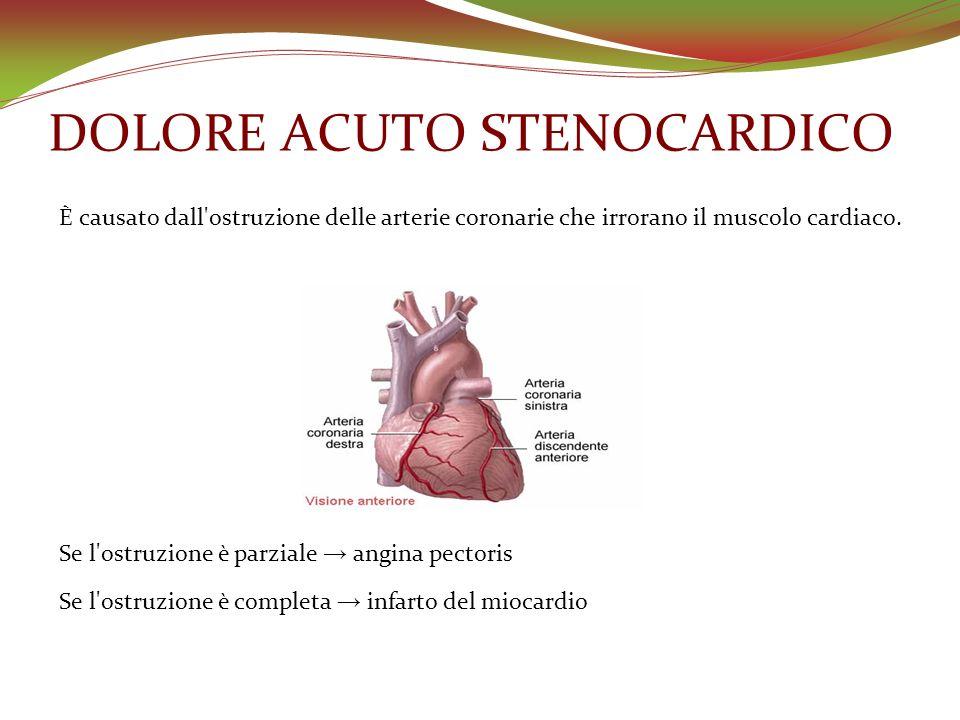 DOLORE ACUTO STENOCARDICO È causato dall'ostruzione delle arterie coronarie che irrorano il muscolo cardiaco. Se l'ostruzione è parziale angina pector