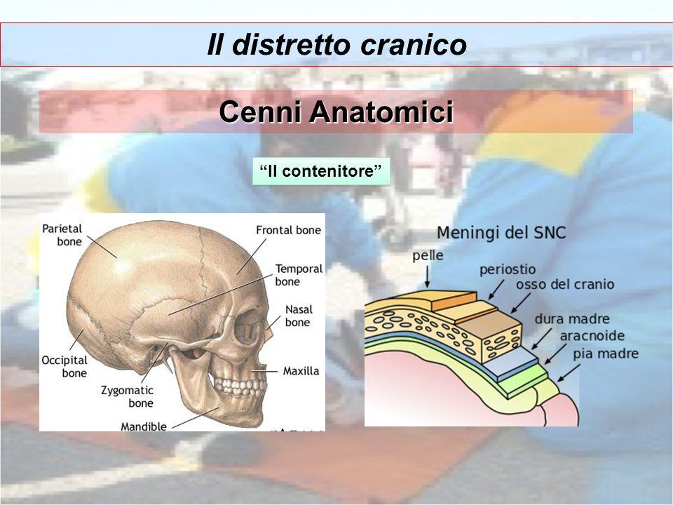 Il distretto cranico Cenni Anatomici Il contenitore