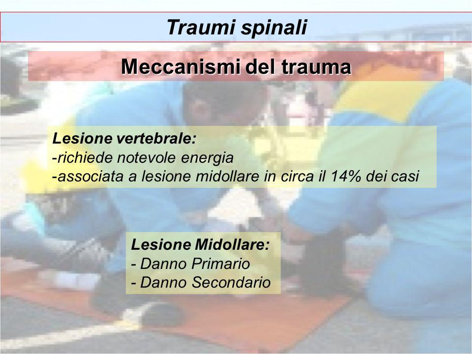 Traumi spinali Meccanismi del trauma Lesione Midollare: - Danno Primario - Danno Secondario Lesione vertebrale: -richiede notevole energia -associata