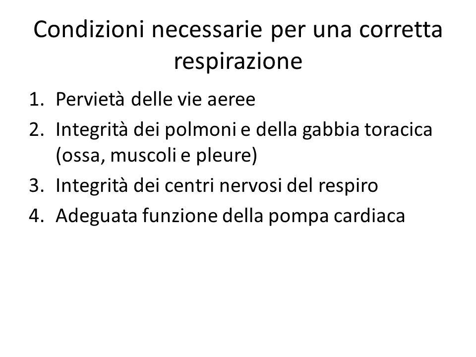 Condizioni necessarie per una corretta respirazione 1.Pervietà delle vie aeree 2.Integrità dei polmoni e della gabbia toracica (ossa, muscoli e pleure