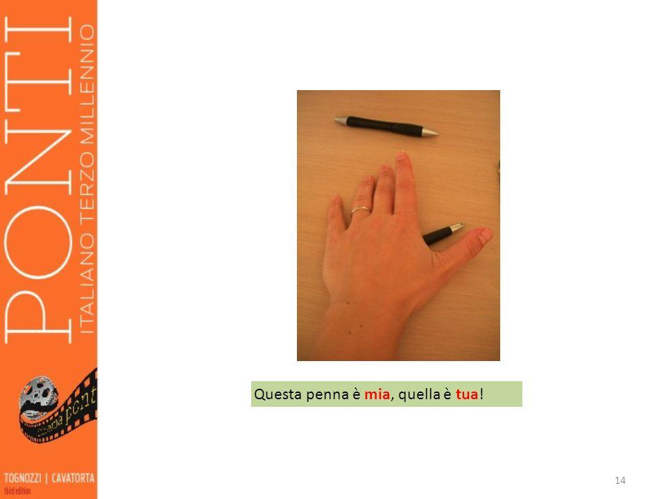 14 Questa penna è mia, quella è tua!