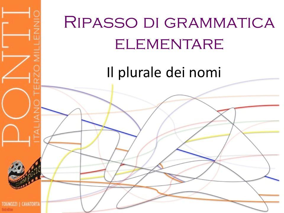 Il plurale dei nomi Ripasso di grammatica elementare