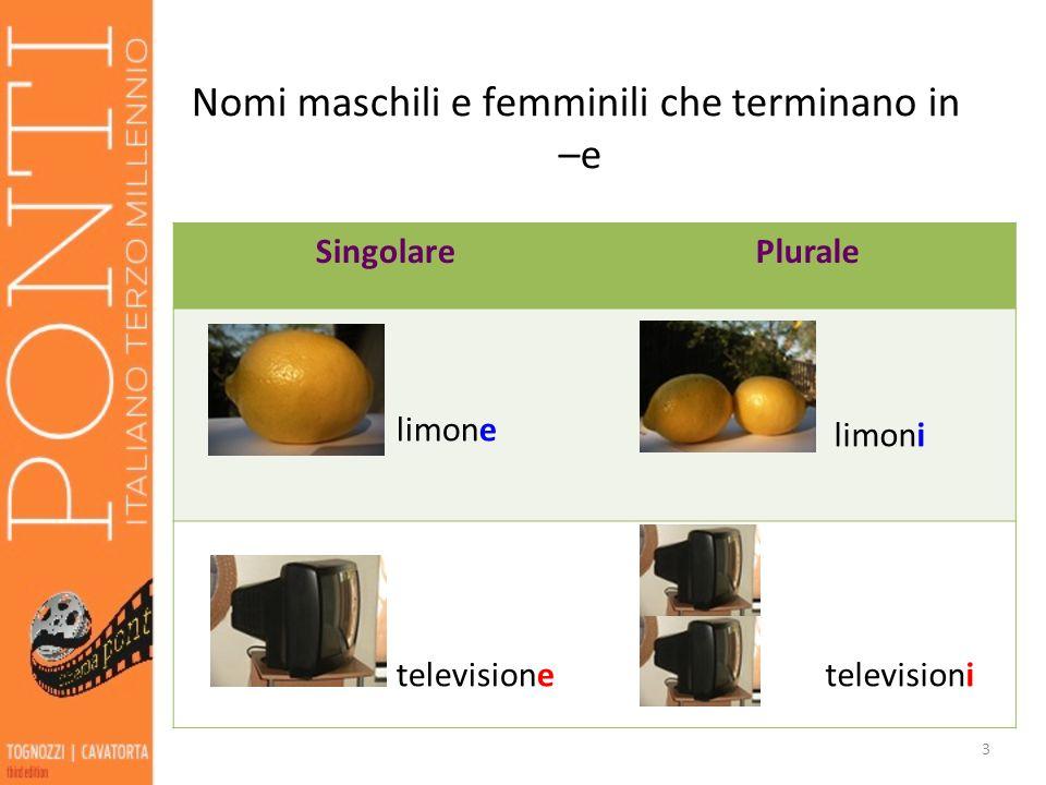 Nomi maschili e femminili che terminano in –e SingolarePlurale limone limoni televisione televisioni 3