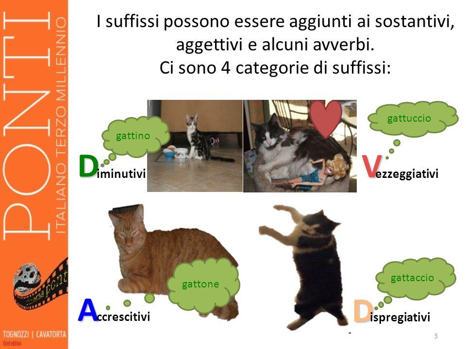 3 I suffissi possono essere aggiunti ai sostantivi, aggettivi e alcuni avverbi.