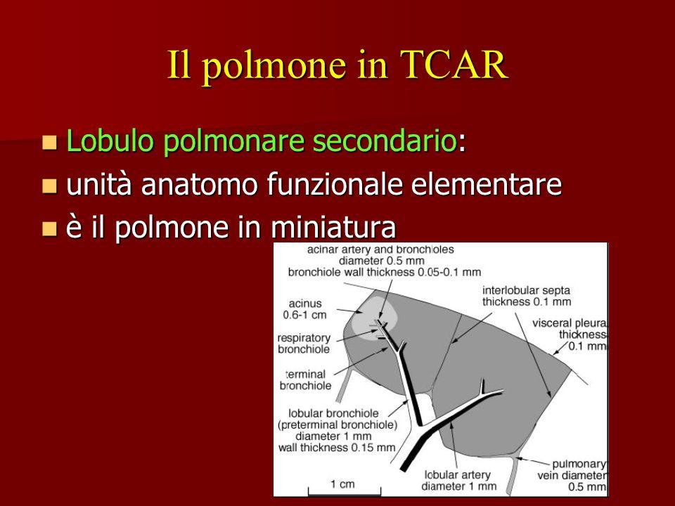 Il polmone in TCAR Lobulo polmonare secondario: Lobulo polmonare secondario: unità anatomo funzionale elementare unità anatomo funzionale elementare è