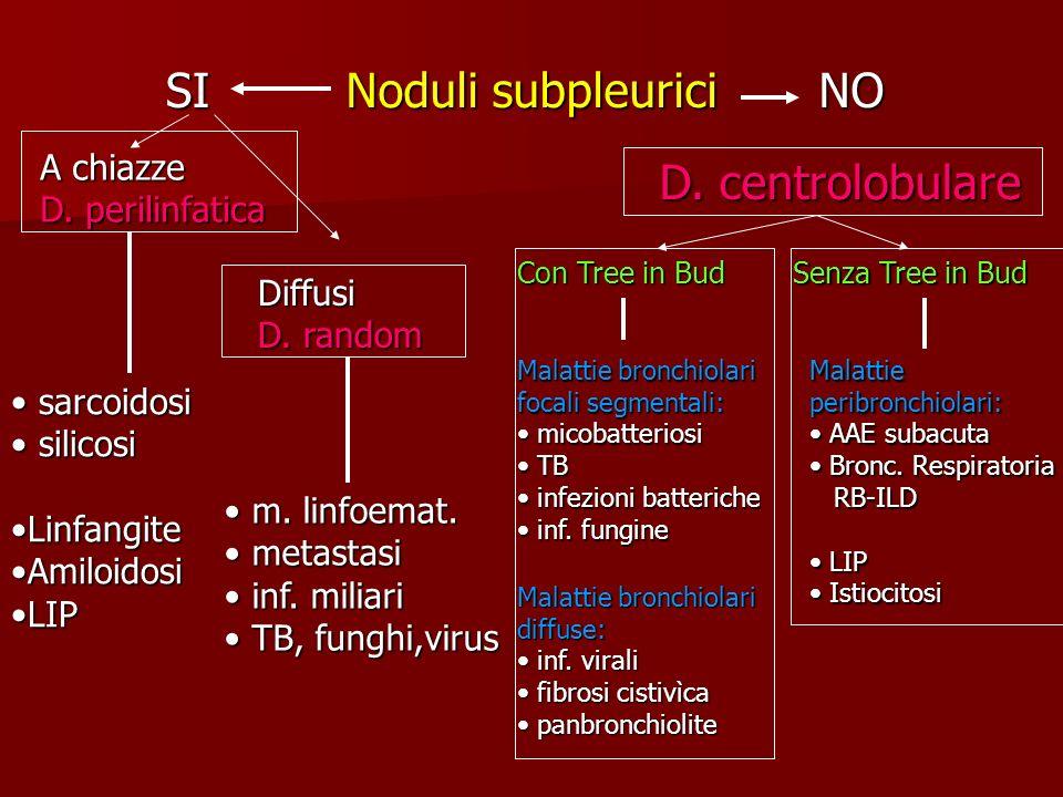 Noduli subpleurici SINO Con Tree in Bud Senza Tree in Bud Malattie bronchiolari focali segmentali: micobatteriosi micobatteriosi TB TB infezioni batte