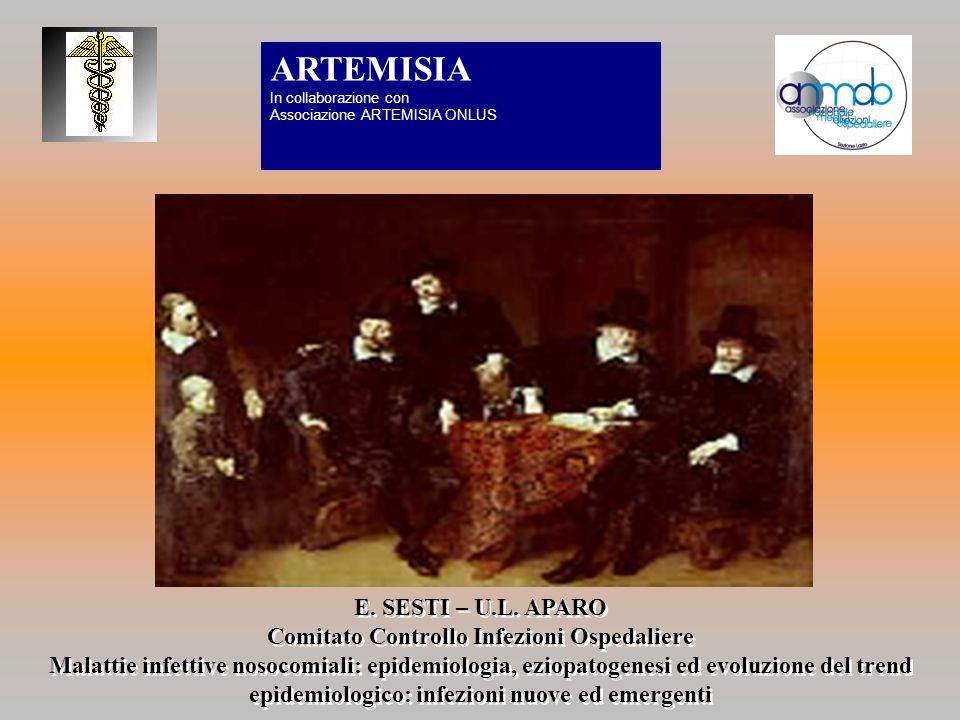 E. SESTI – U.L. APARO Comitato Controllo Infezioni Ospedaliere Malattie infettive nosocomiali: epidemiologia, eziopatogenesi ed evoluzione del trend e