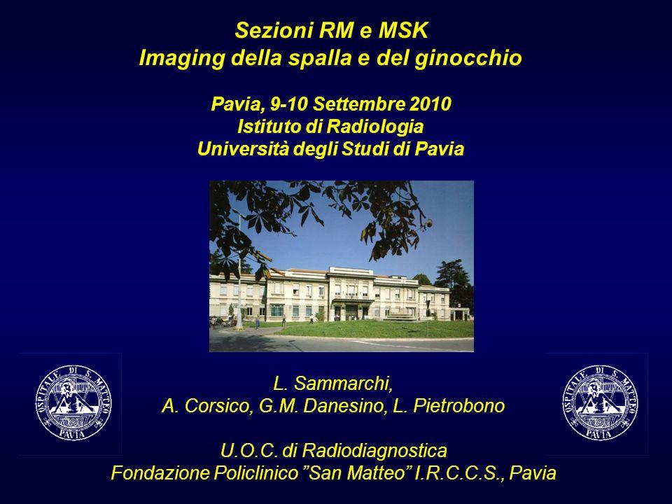 Sezioni RM e MSK Imaging della spalla e del ginocchio Pavia, 9-10 Settembre 2010 Istituto di Radiologia Università degli Studi di Pavia L. Sammarchi,