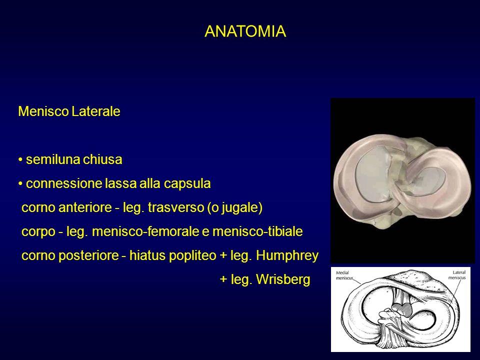 ANATOMIA Menisco Laterale semiluna chiusa connessione lassa alla capsula corno anteriore - leg. trasverso (o jugale) corpo - leg. menisco-femorale e m