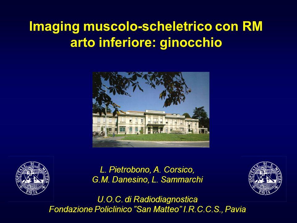 Imaging muscolo-scheletrico con RM arto inferiore: ginocchio L. Pietrobono, A. Corsico, G.M. Danesino, L. Sammarchi U.O.C. di Radiodiagnostica Fondazi
