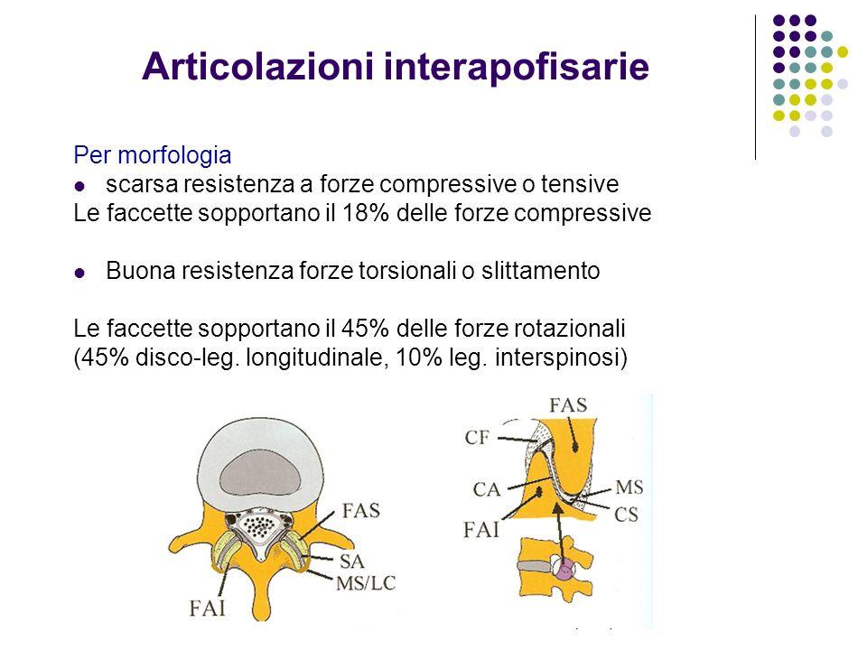Articolazioni interapofisarie Per morfologia scarsa resistenza a forze compressive o tensive Le faccette sopportano il 18% delle forze compressive Buo