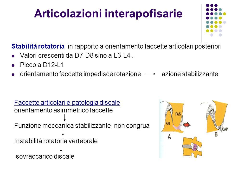 Articolazioni interapofisarie Stabilità rotatoria in rapporto a orientamento faccette articolari posteriori Valori crescenti da D7-D8 sino a L3-L4. Pi