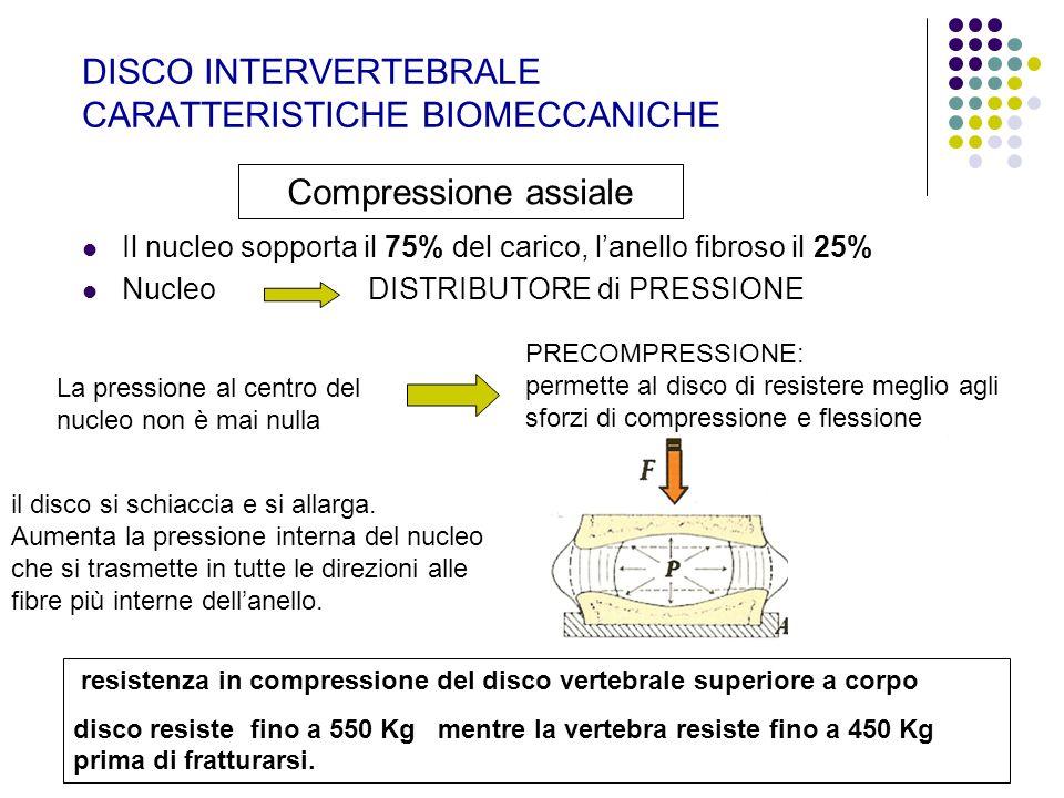 DISCO INTERVERTEBRALE CARATTERISTICHE BIOMECCANICHE Il nucleo sopporta il 75% del carico, lanello fibroso il 25% Nucleo DISTRIBUTORE di PRESSIONE Comp