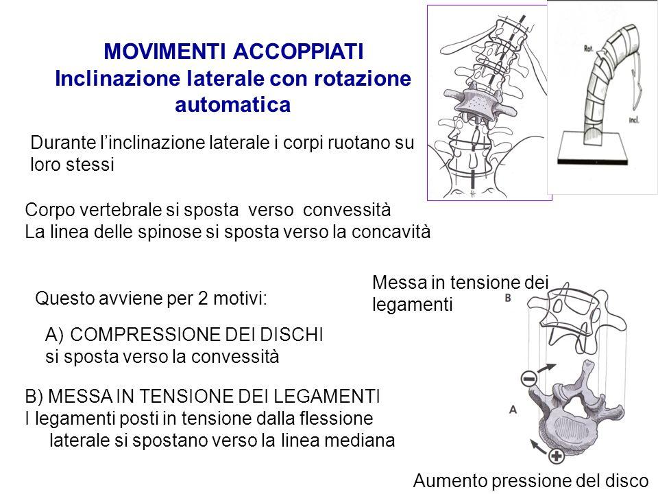Durante linclinazione laterale i corpi ruotano su loro stessi Corpo vertebrale si sposta verso convessità La linea delle spinose si sposta verso la co