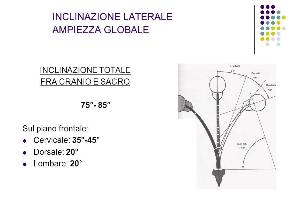 INCLINAZIONE LATERALE AMPIEZZA GLOBALE INCLINAZIONE TOTALE FRA CRANIO E SACRO 75°- 85° Sul piano frontale: Cervicale: 35°-45° Dorsale: 20° Lombare: 20