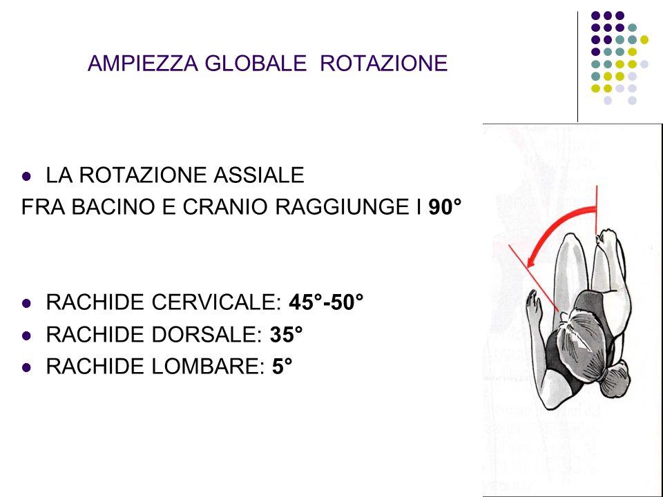 AMPIEZZA GLOBALE ROTAZIONE LA ROTAZIONE ASSIALE FRA BACINO E CRANIO RAGGIUNGE I 90° RACHIDE CERVICALE: 45°-50° RACHIDE DORSALE: 35° RACHIDE LOMBARE: 5
