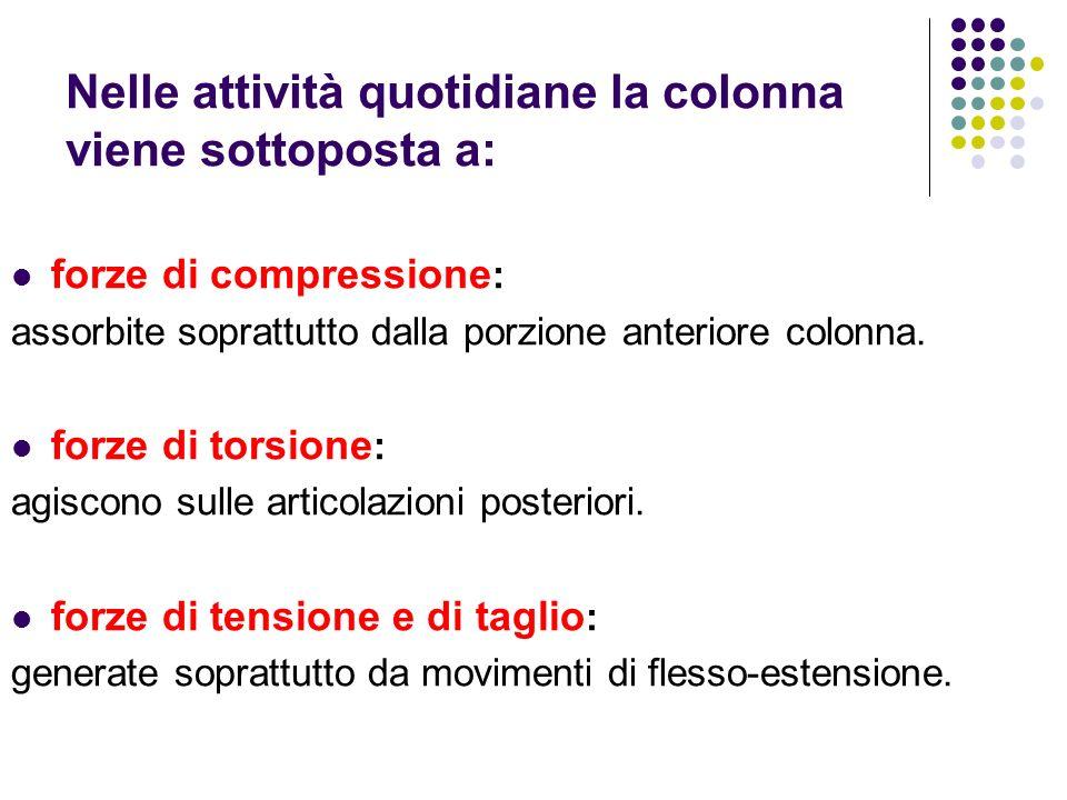 Nelle attività quotidiane la colonna viene sottoposta a: forze di compressione : assorbite soprattutto dalla porzione anteriore colonna. forze di tors