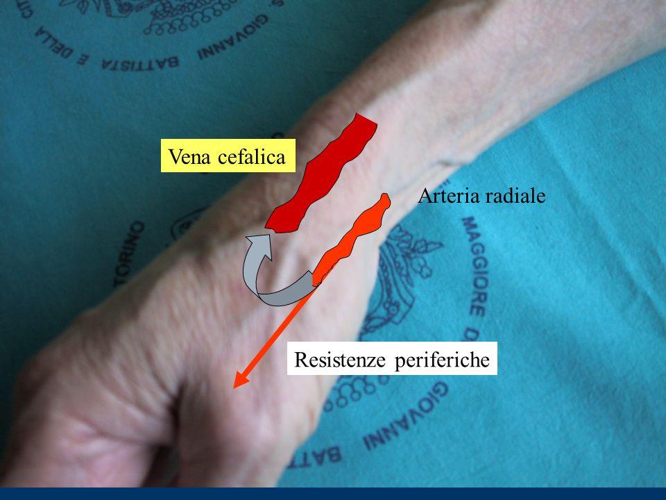 Arteria radiale Resistenze periferiche Vena cefalica
