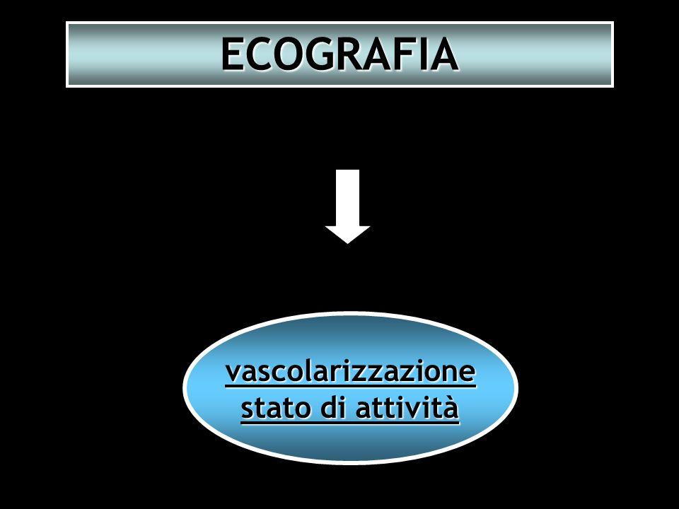 vascolarizzazione stato di attività ECOGRAFIA