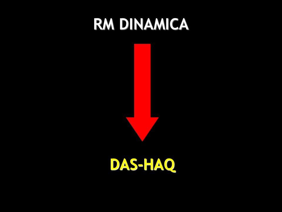 RM DINAMICA DAS-HAQ