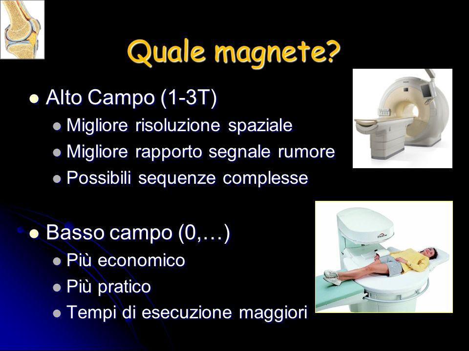 Quale magnete? Alto Campo (1-3T) Alto Campo (1-3T) Migliore risoluzione spaziale Migliore risoluzione spaziale Migliore rapporto segnale rumore Miglio