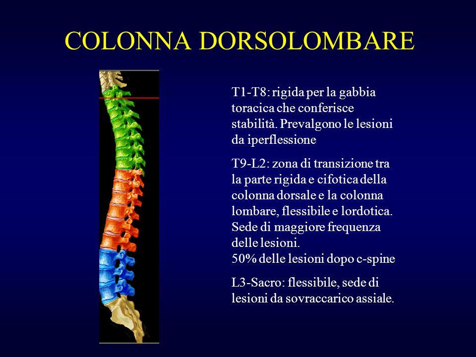 COLONNA DORSOLOMBARE T1-T8: rigida per la gabbia toracica che conferisce stabilità. Prevalgono le lesioni da iperflessione T9-L2: zona di transizione