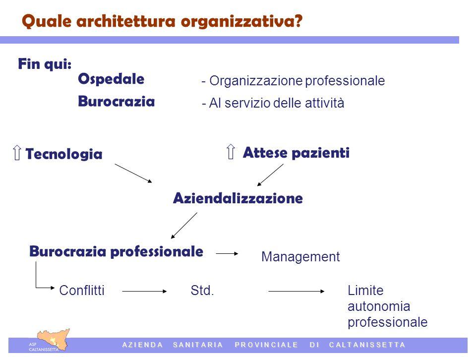 Azienda Sanitaria Provinciale di Caltanissetta A Z I E N D A S A N I T A R I A P R O V I N C I A L E D I C A L T A N I S S E T T A Quale architettura organizzativa.
