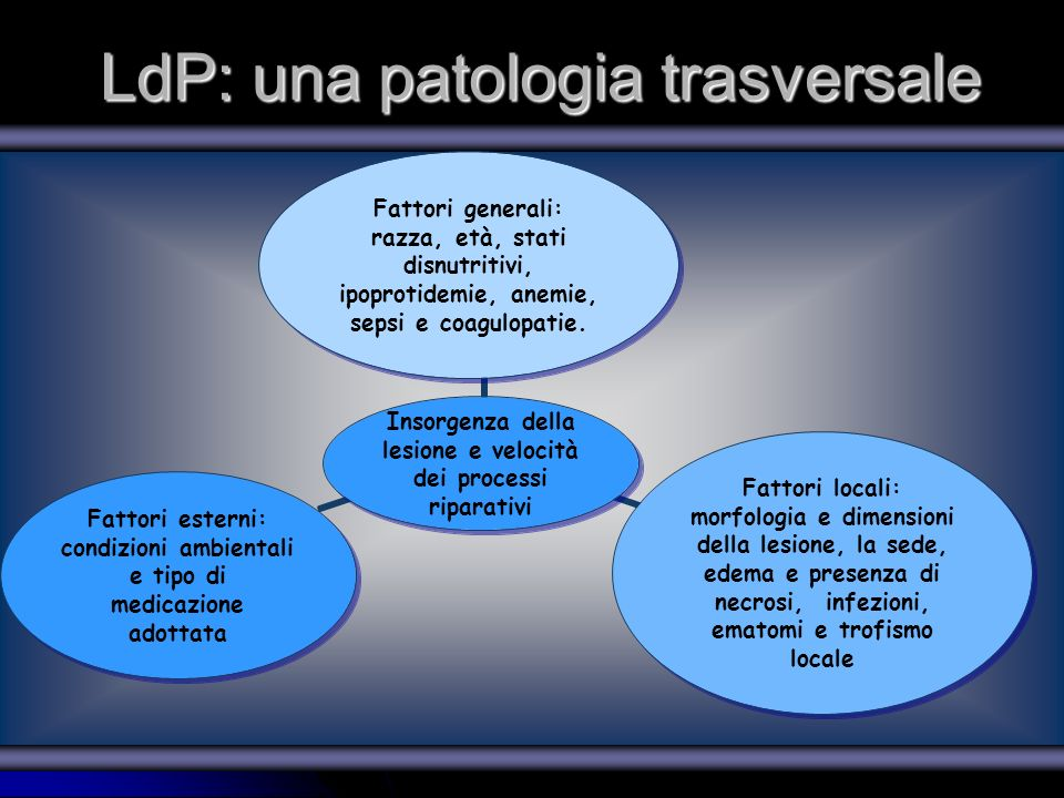 LdP: una patologia trasversale Insorgenza della lesione e velocità dei processi riparativi Fattori generali: razza, età, stati disnutritivi, ipoprotid