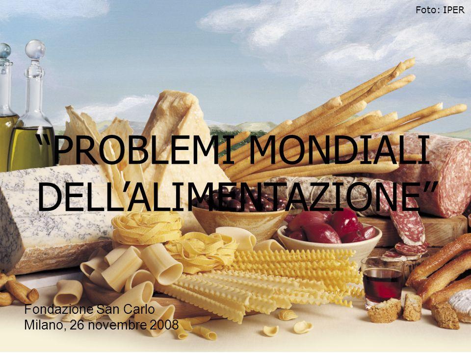PROBLEMI MONDIALI DELLALIMENTAZIONE Foto: IPER Fondazione San Carlo Milano, 26 novembre 2008