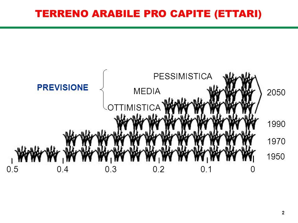 TERRENO ARABILE PRO CAPITE (ETTARI) 1950 1970 1990 2050 PREVISIONE PESSIMISTICA OTTIMISTICA MEDIA 0.5 0.4 0.3 0.2 0.1 0 2