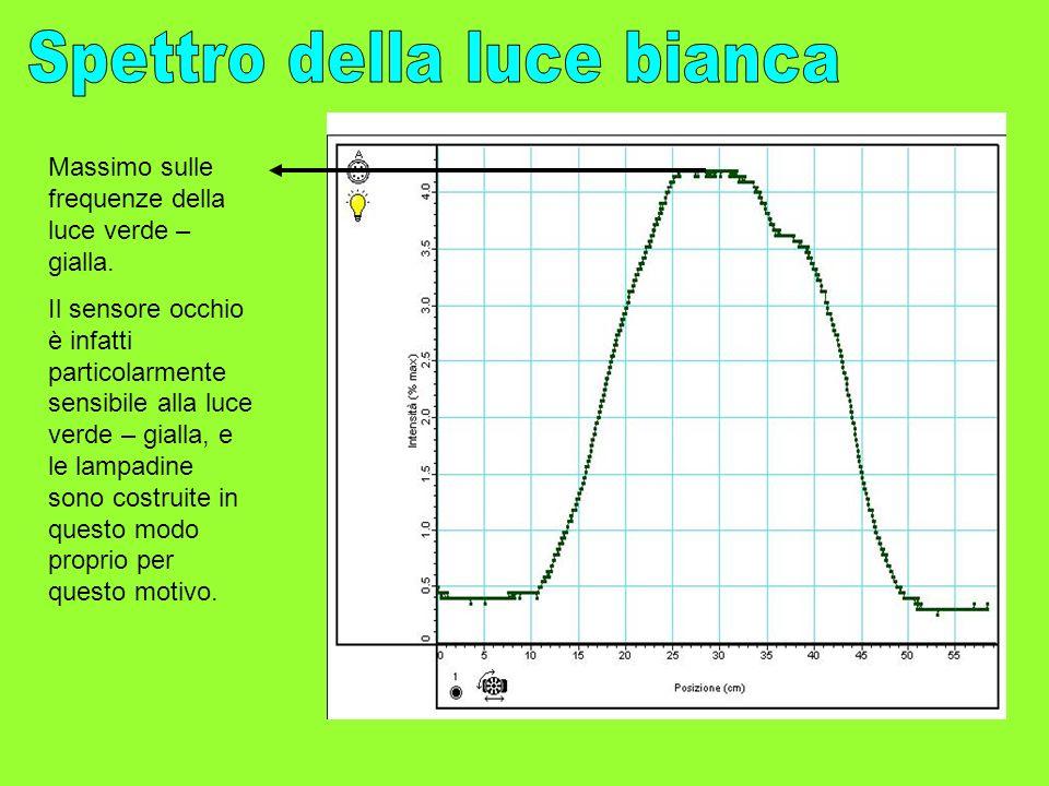 Massimo sulle frequenze della luce verde – gialla. Il sensore occhio è infatti particolarmente sensibile alla luce verde – gialla, e le lampadine sono