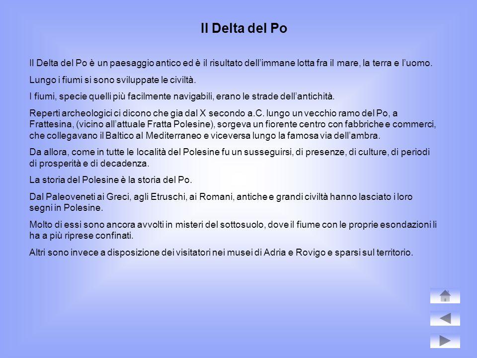 Lungo i rami del Po Sei sono i rami attivi principali del Po che sboccano in Adriaticosul versante polesano.