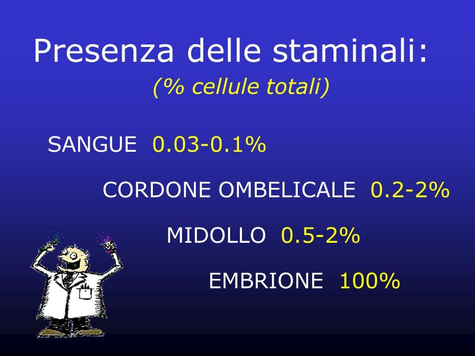 Presenza delle staminali: (% cellule totali) SANGUE 0.03-0.1% CORDONE OMBELICALE 0.2-2% MIDOLLO 0.5-2% EMBRIONE 100%
