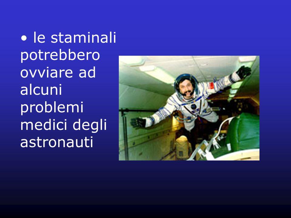 le staminali potrebbero ovviare ad alcuni problemi medici degli astronauti
