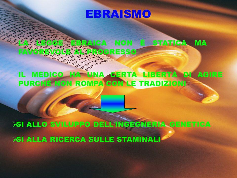 UNIONE CHIESE EUROPEE (anglicana, ortodossa, luterana e cattolica) NO RIPROGAMMAZIONE EMBRIONI NO CLONAZIONE (NÉ TERAPEUTICA, NÉ RIPRODUTTIVA) NO RICERCA SUGLI EMBRIONI NÉ SULLE STAMINALI NO USO CELLULE ANIMALI