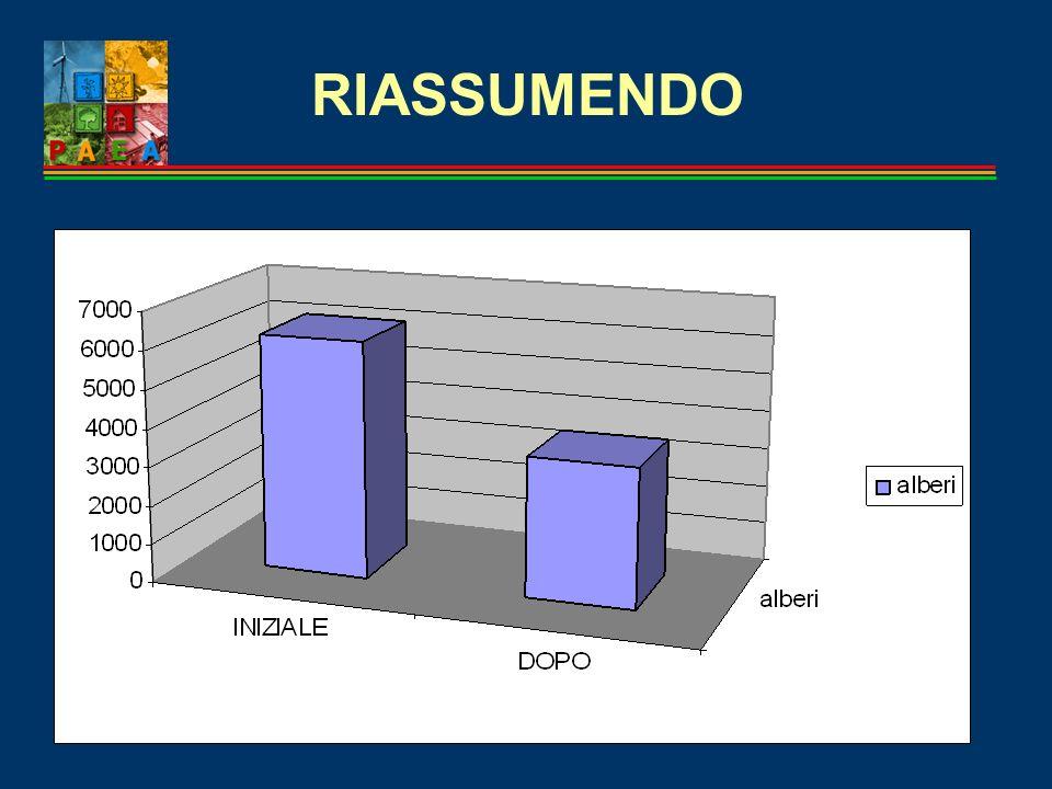 RIASSUMENDO GRAFICO FINALE