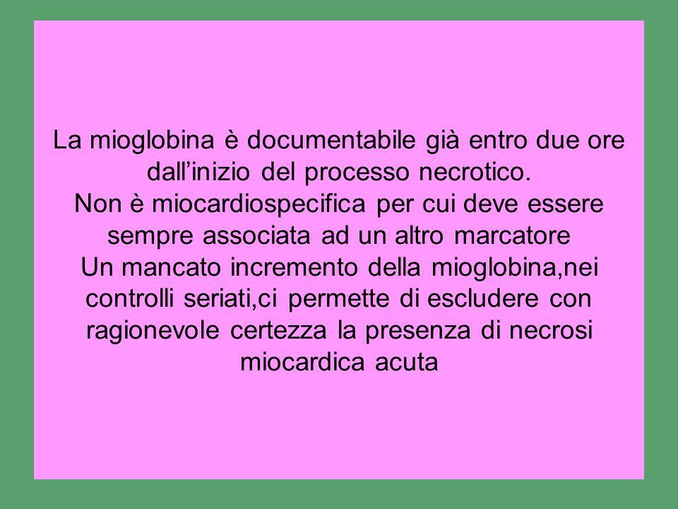 La mioglobina è documentabile già entro due ore dallinizio del processo necrotico. Non è miocardiospecifica per cui deve essere sempre associata ad un