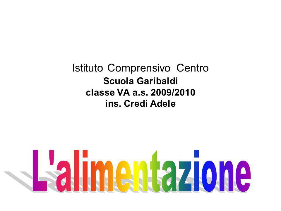 Istituto Comprensivo Centro Scuola Garibaldi classe VA a.s. 2009/2010 ins. Credi Adele