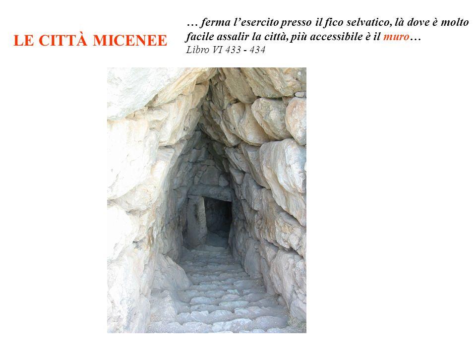LE CITTÀ MICENEE … ferma lesercito presso il fico selvatico, là dove è molto facile assalir la città, più accessibile è il muro… Libro VI 433 - 434