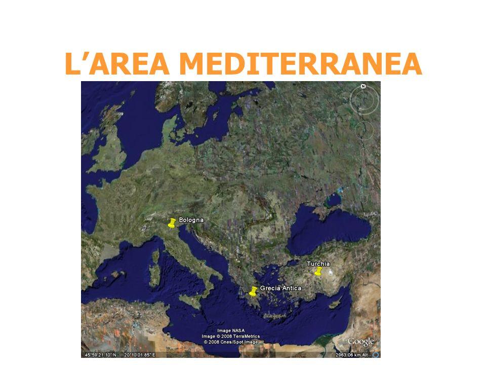 LAREA MEDITERRANEA