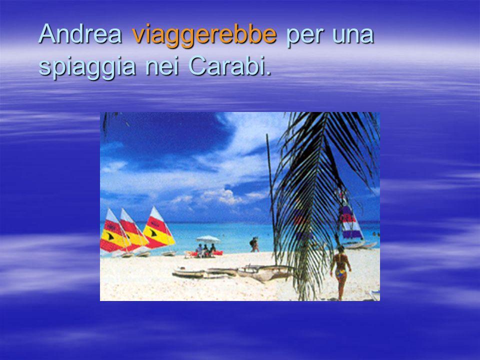 Andrea viaggerebbe per una spiaggia nei Carabi.
