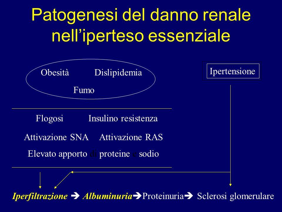 Patogenesi del danno renale nelliperteso essenziale Ipertensione ObesitàDislipidemia Fumo FlogosiInsulino-resistenza Attivazione SNAAttivazione RAS El